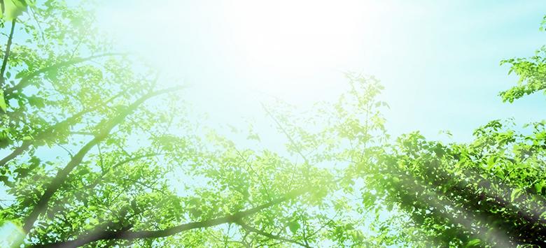 kokorotaicho - 自律神経について